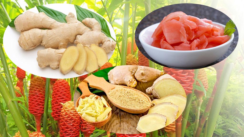 Лечебные свойства имбиря для похудения